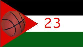 jordan flag 23
